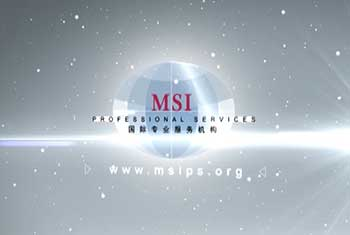 MSI Professional Services